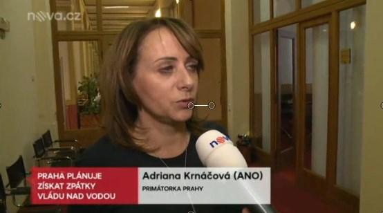 Adié Veolié: Praha chce 100% společnosti Pražské vodovody a kanalizace a nejen Praha
