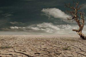 Půda, spolu s vodou, se stává strategickou surovinou. Jak jsme se stali kolonií?