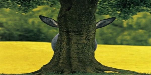oslik za stromem
