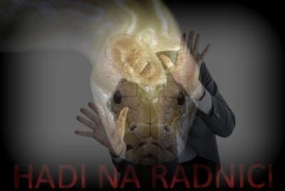 Had na radnici - pravdaovode.cz